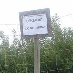 Why Grow Organically?