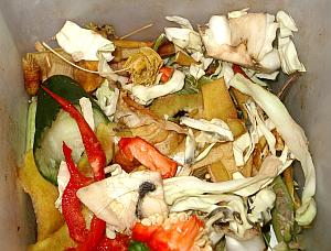 Use your organic scraps to make compost