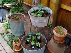 You can use all sorts of garden containers to grow your herbs in