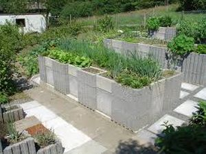 Home gardening plots can come in all shapes and sizes
