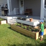 Grow Your Own Food: A Hobby Worth Every Cent