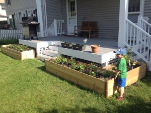 Learning how to plant a garden has benefited my family in so many ways.