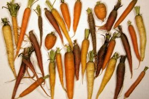 Growing carrots in containers from seeds is certainly worth a try