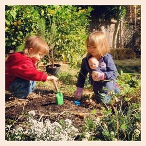 Gardening has evolved into an enjoyable family time, with each seed sprouting bringing joy to every family member, including the kids.